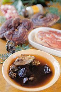 田七靈芝瘦肉湯